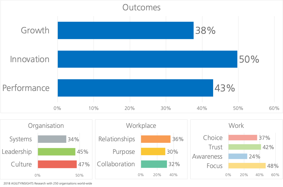 AGILITYINSIGHTS.NET Agile Results